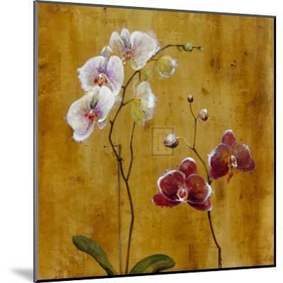 Orchid Bloom II-Georgie-Mounted Art Print