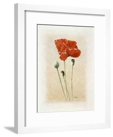 Coquelicot II-Laurence David-Framed Art Print