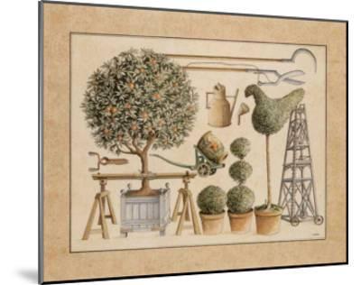 L'Art de Former les Topiaires, l'Oranger-Laurence David-Mounted Art Print