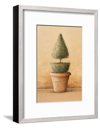 Topiaire II-Laurence David-Framed Art Print