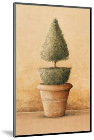 Topiaire II-Laurence David-Mounted Art Print