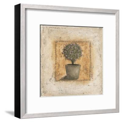 Pot et Arbuste Fleuri-V?ronique Didier-Laurent-Framed Art Print