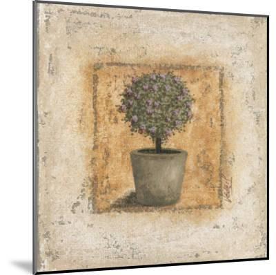 Pot et Arbuste Fleuri-V?ronique Didier-Laurent-Mounted Art Print