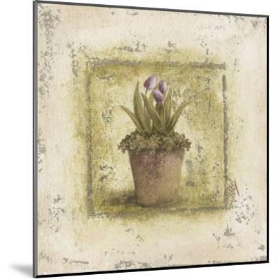 Tulipes Violettes-V?ronique Didier-Laurent-Mounted Art Print