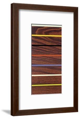 Woodgrain and Stripe-Dan Bleier-Framed Giclee Print
