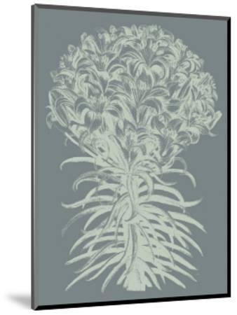 Lilies, no. 7-Botanical Series-Mounted Giclee Print