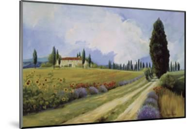 Holiday in Tuscany-Hawley-Mounted Giclee Print