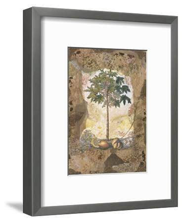 Lace and Papaya-David Hewitt-Framed Giclee Print