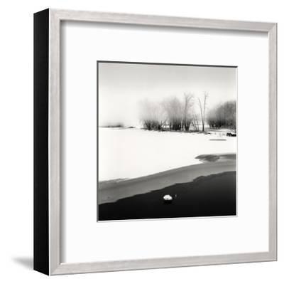 Petrie Island, Study, no. 1-Andrew Ren-Framed Giclee Print