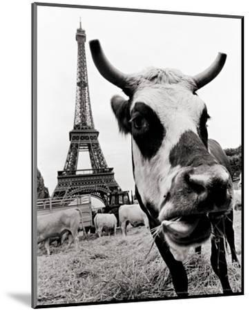 A Farmers Demonstration in Paris-Elise Hardy-Mounted Art Print
