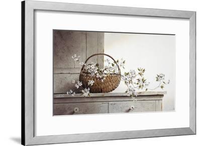 Spring Blossoms-Ray Hendershot-Framed Art Print