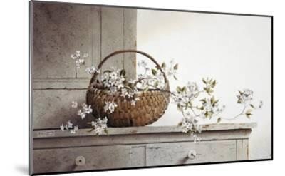 Spring Blossoms-Ray Hendershot-Mounted Art Print