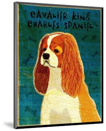 Cavalier King Charles (blenheim)-John Golden-Mounted Art Print