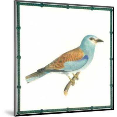 Ornitologica III--Mounted Art Print