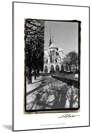 Notre Dame Cathedral I-Laura Denardo-Mounted Art Print