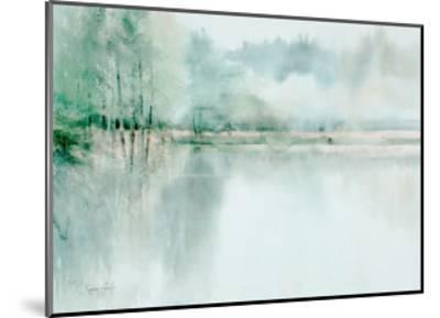 Lake View I-Xavier Swolfs-Mounted Art Print