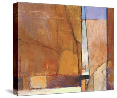 Canyon I-Tony Saladino-Stretched Canvas Print
