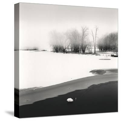 Petrie Island, Study, no. 1-Andrew Ren-Stretched Canvas Print