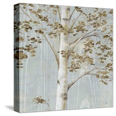 Birch Study II-Daphn? B-Stretched Canvas Print