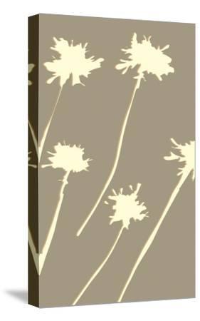 Pompom Walnut-Denise Duplock-Stretched Canvas Print