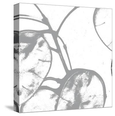 Silver Dollars I-Erin Clark-Stretched Canvas Print