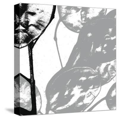 Silver Dollars VI-Erin Clark-Stretched Canvas Print