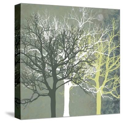 Tranquil Forest-Erin Clark-Stretched Canvas Print