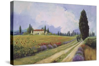 Holiday in Tuscany-Hawley-Stretched Canvas Print
