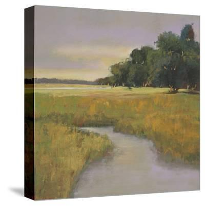 Placid Marsh-Adina Langford-Stretched Canvas Print