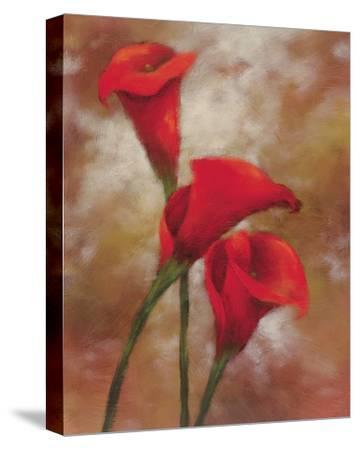 Magic Melody-Onan Balin-Stretched Canvas Print