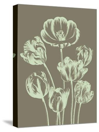 Tulip, no. 12--Stretched Canvas Print