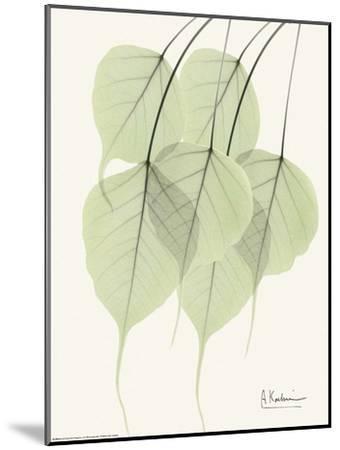 Cascading Bo Tree-Albert Koetsier-Mounted Art Print