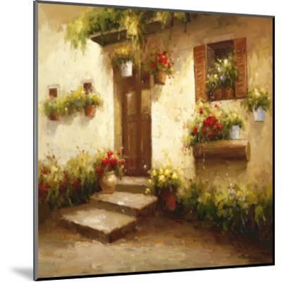 Rustic Doorway II-David Lakewood-Mounted Art Print