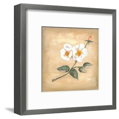 Branch Of White Flower II-Urpina-Framed Art Print