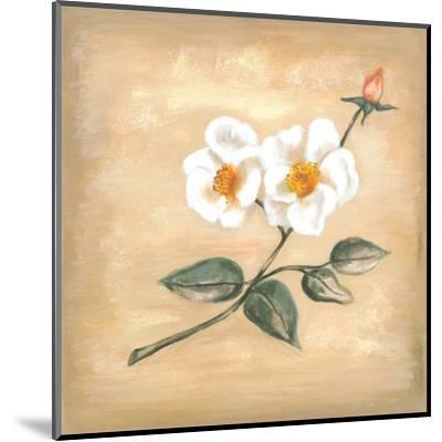 Branch Of White Flower II-Urpina-Mounted Art Print