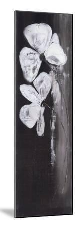 Deux Fleurs Fond Noir-Marielle Paccard-Mounted Art Print