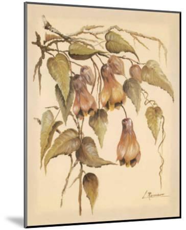 Flores Colgantes III-Luis Romero-Mounted Art Print
