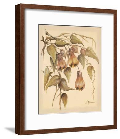 Flores Colgantes III-Luis Romero-Framed Art Print