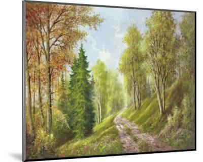 Mountain Path-Helmut Glassl-Mounted Art Print