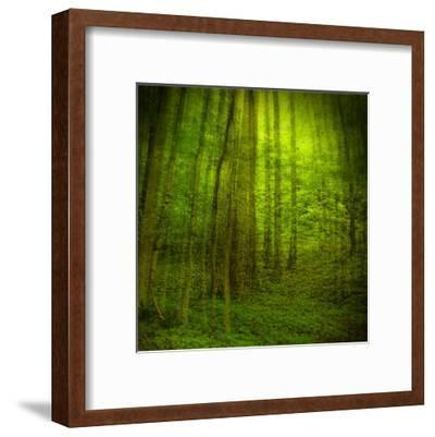 Natural Look III-Jean-Fran?ois Dupuis-Framed Art Print