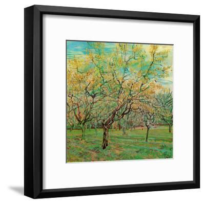 Verger Avec Pruniers En Fleurs-Vincent van Gogh-Framed Art Print