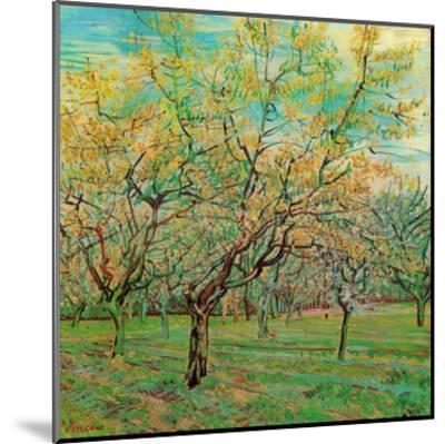 Verger Avec Pruniers En Fleurs-Vincent van Gogh-Mounted Art Print