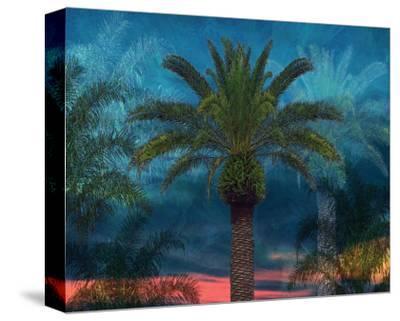 Palmae Vista I-Melinda Bradshaw-Stretched Canvas Print