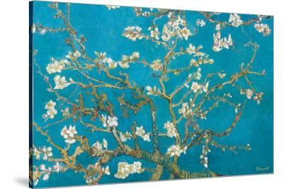 Almond Branches in Bloom, San Remy, c.1890-Vincent van Gogh-Stretched Canvas Print