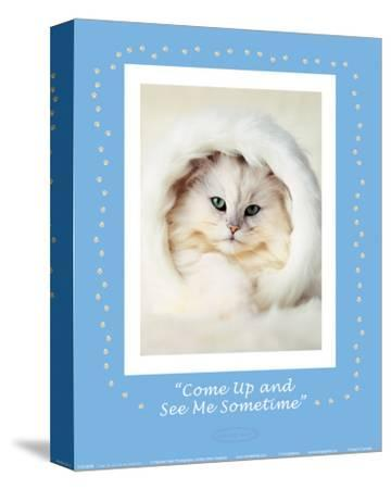 See Me Sometime-Rachael Hale-Stretched Canvas Print