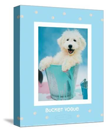 Bucket Vogue-Rachael Hale-Stretched Canvas Print
