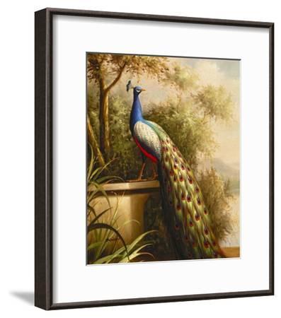 Regal Peacock--Framed Art Print