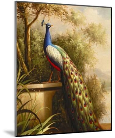Regal Peacock--Mounted Art Print