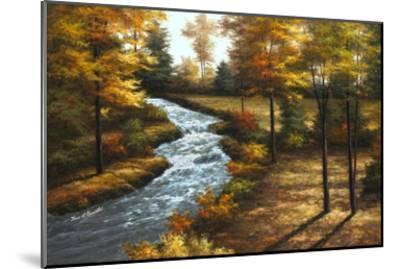 Roaring Brook-Diane Romanello-Mounted Art Print