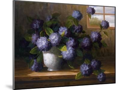 Hydrangea Blossoms II-Welby-Mounted Art Print